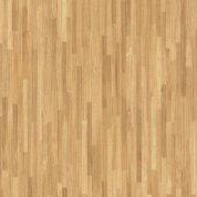 Бамбук African